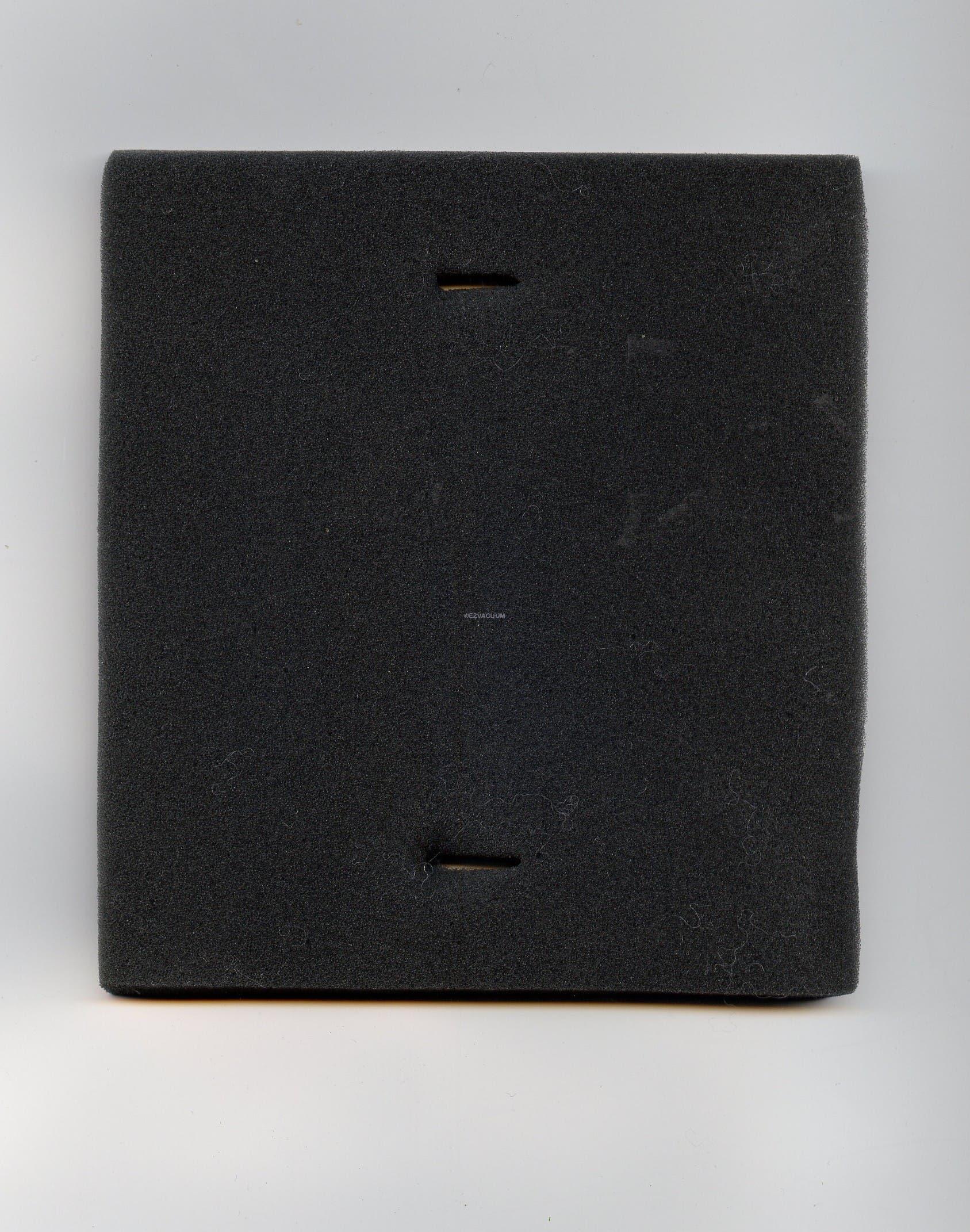 Eureka Foam Insert Filter for DCF8  74038