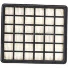 Carpet Pro SCBP-1 Back Pack Secondary HEPA Filter - B352-2401