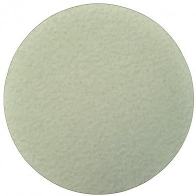 Silver King Canister Filter Disks Generic 20 Pack